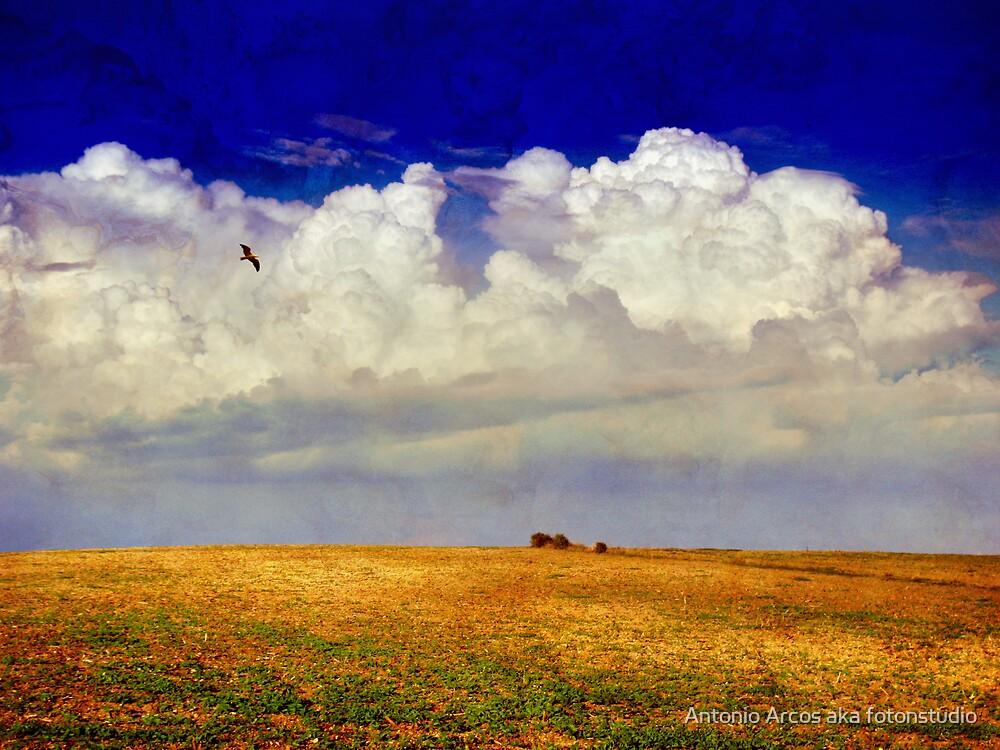 BlueStorm by Antonio Arcos aka fotonstudio
