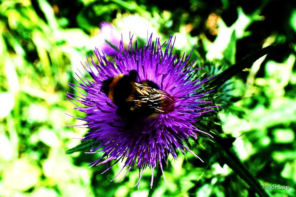 Busy Bee by heidi-bee