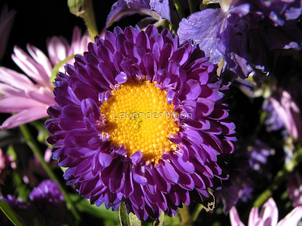 Happy Tears by LavenderMoon