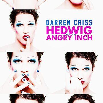 Darren is Hedwig by darecrisp