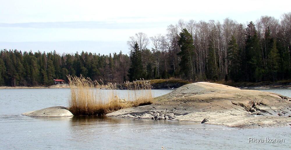 Winter Is Gone by Ritva Ikonen