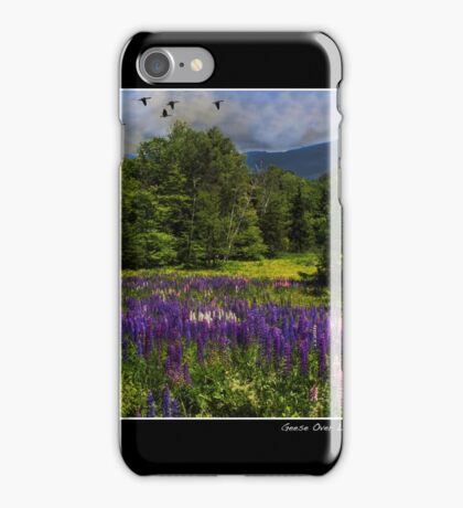 Geese Over Lupine Field Poster iPhone Case/Skin