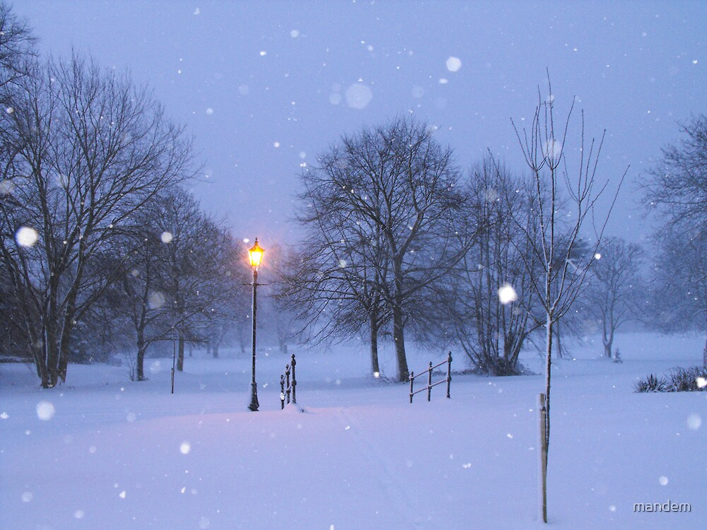 Winter wonderland by mandem