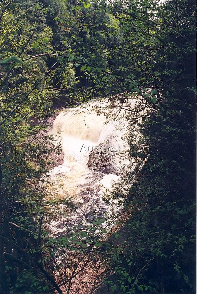 Potawatomi Falls #2 by AuntieJ