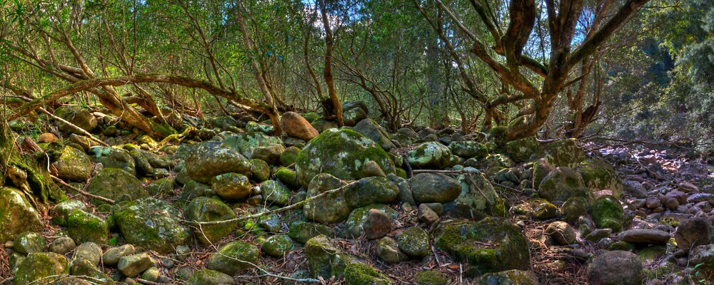 Kanagroo Valley River Bed - HDR Panorama by Jason Ruth