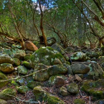 Kanagroo Valley River Bed - HDR Panorama by scatrdjason
