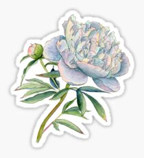 Peony in watercolor and ink by farrahdelle Sticker