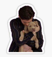tom holland puppy interview  Sticker