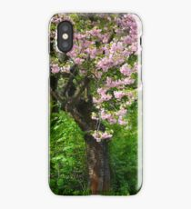 Brings back Great Dreams 27/04/2018. © Dr.Andrzej Goszcz. Galicia. iPhone Case