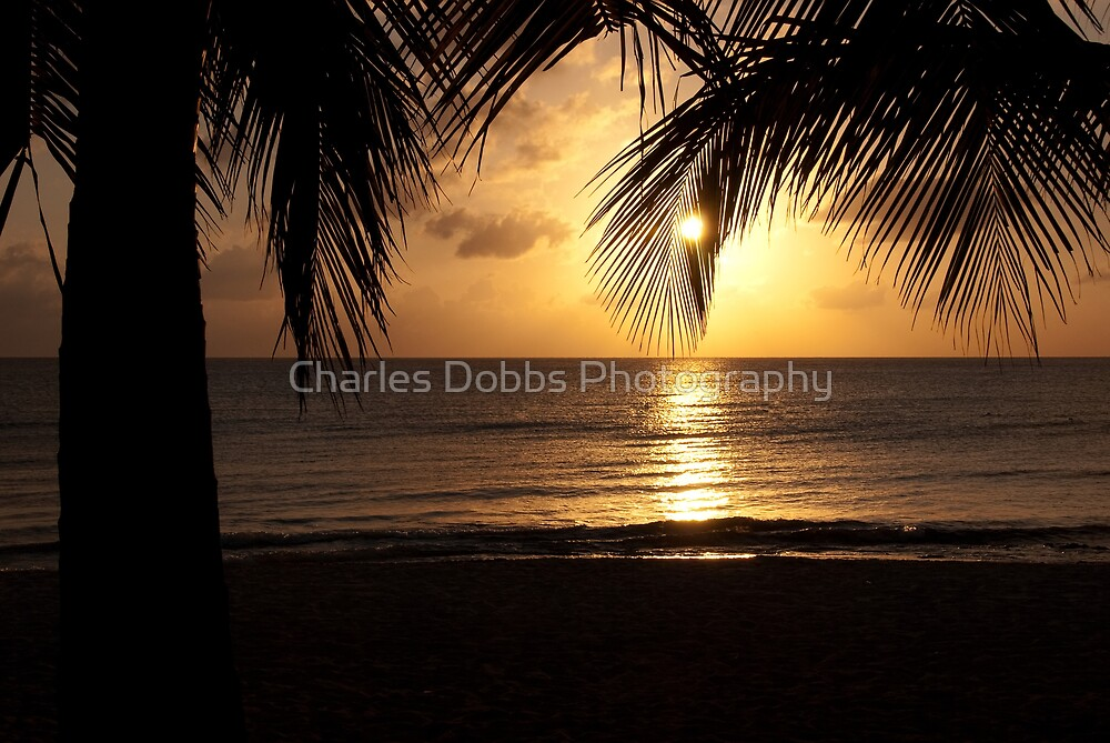 Island Sunset by Charles Dobbs Photography