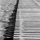 Linien von Julia Aufschnaiter