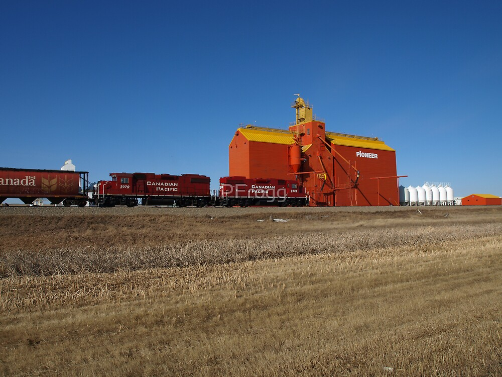 Prairie Icon Pioneer Grain Co. by PFrogg