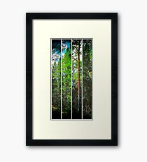 Pine Tree in Four Parts Framed Print