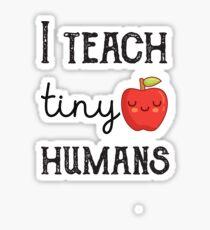 teacher of tiny humans shirt / kindergarten teacher shirt Sticker