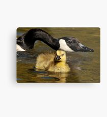 Mommy's Here Metal Print