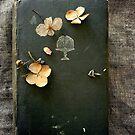 Vintage Impressions  by Karen E Camilleri