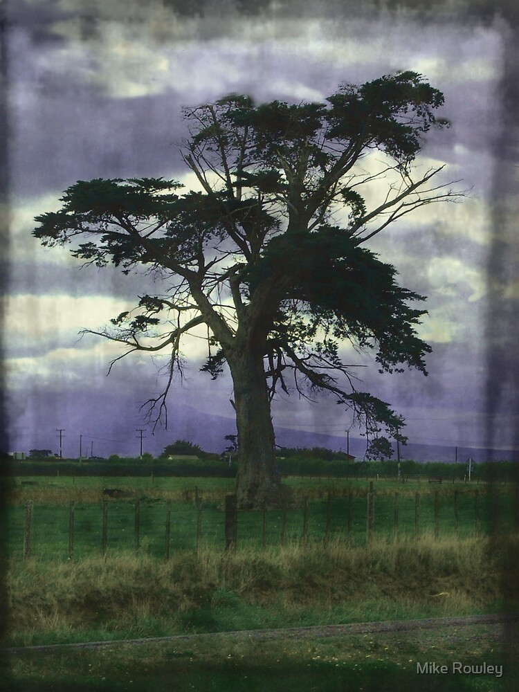My Lonley Tree Waits by Mike Rowley