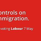 Controls on immigration: Labour tribute mug by unloveablesteve