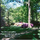 ISABELLA PLANTATION/BIBLE VERSE/BESPOKE TEXT by Shoshonan