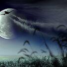 Into The Sky by Igor Zenin