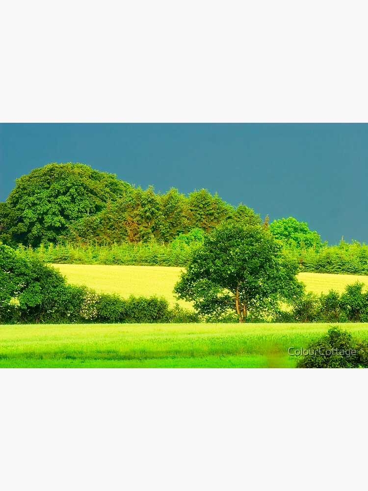 Greener than green by ColourCottage