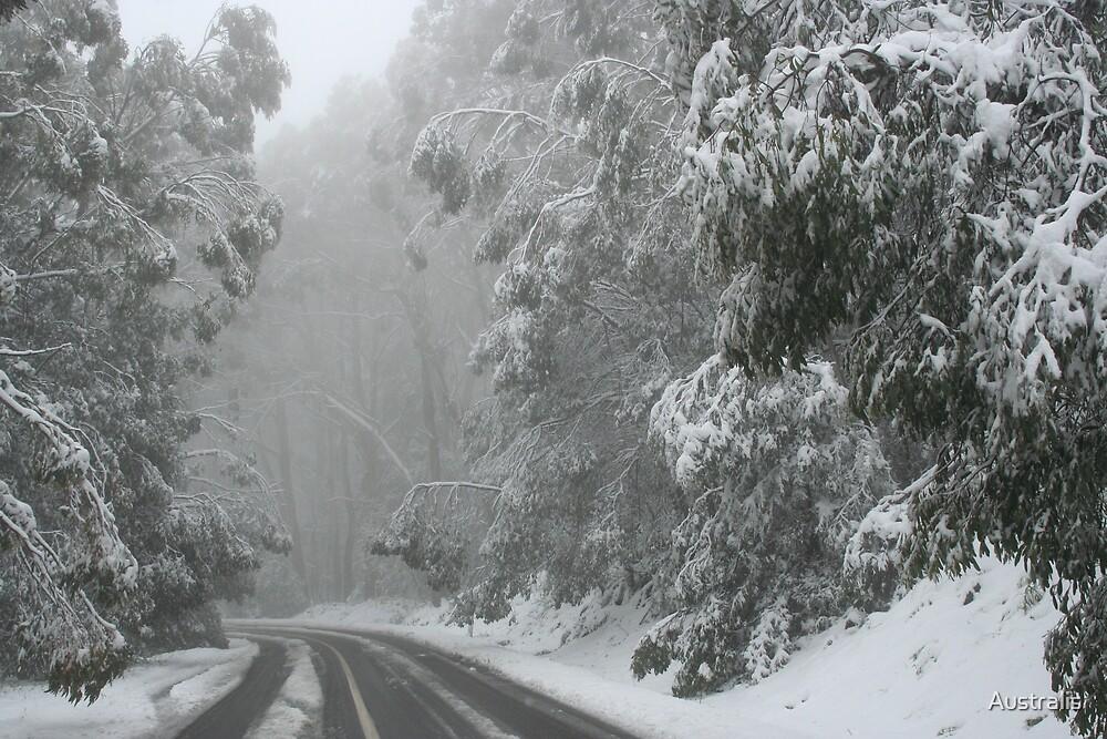 White Christmas by Australis
