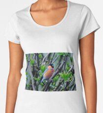 Bullfinch in breeding trim  Women's Premium T-Shirt