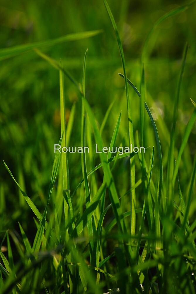 Grass by Rowan  Lewgalon
