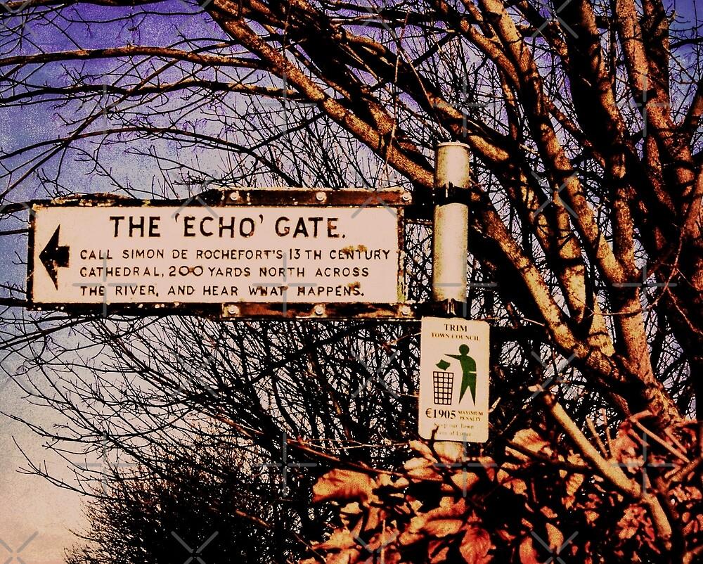 Echo Gate by Catfink