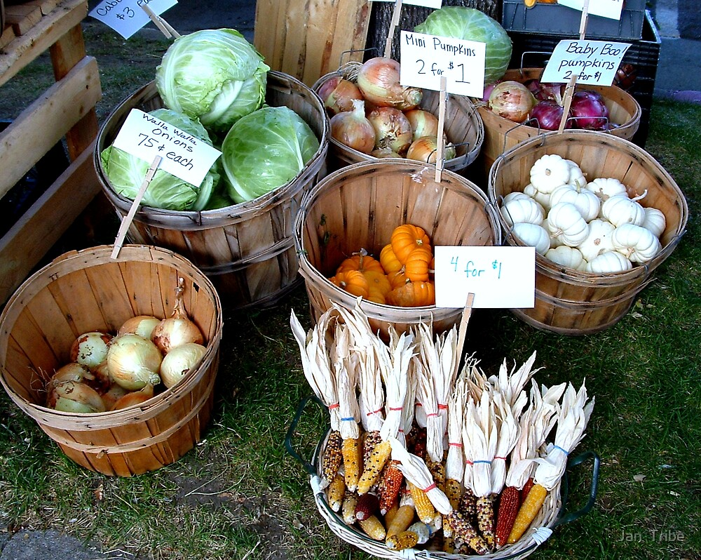 Ogden Farmer's Market 2008 - 2nd of Series by Jan  Tribe