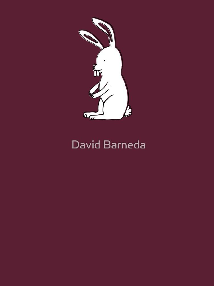 The White Rabbit by barneda