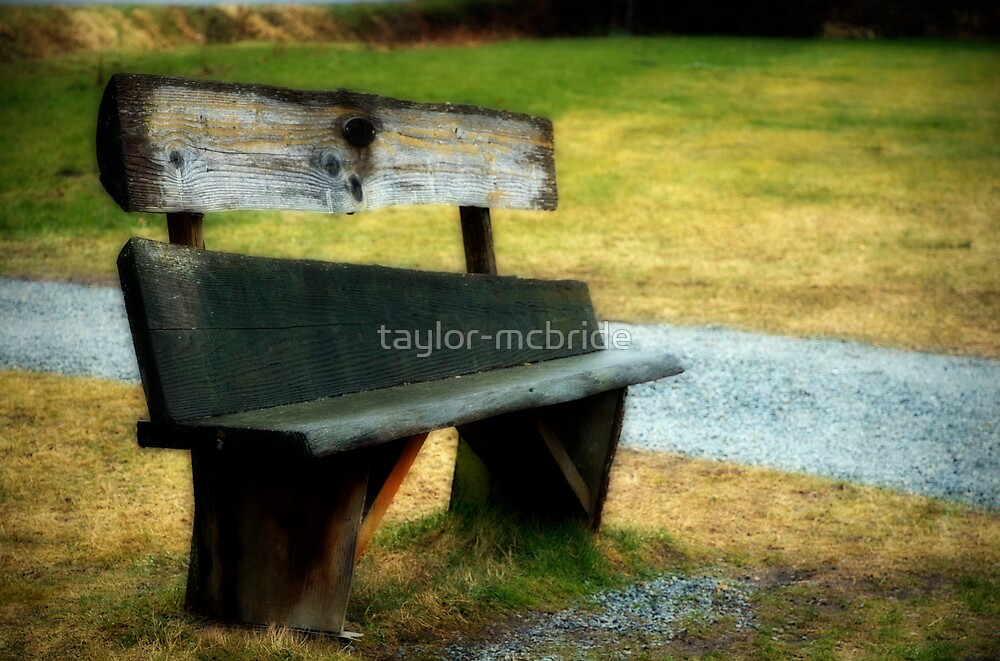 The Bench by taylor-mcbride
