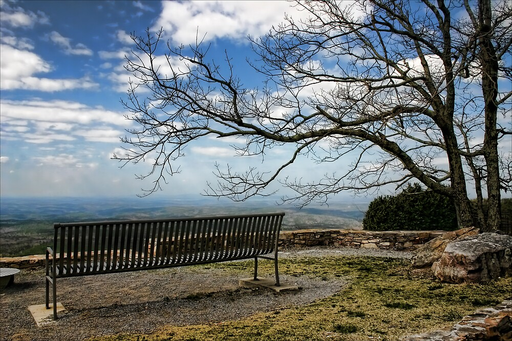 Cheaha Mountain by Patricia Montgomery