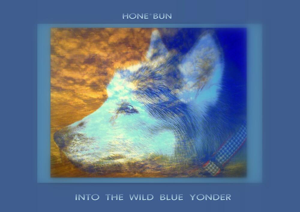 INTO THE WILD BLUE YONDER by Dalzenia Sams