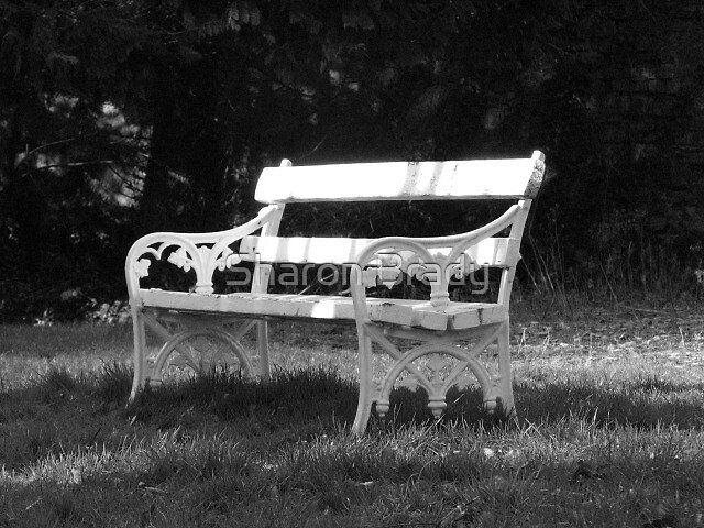 The Lonely Bench by Sharon Brady
