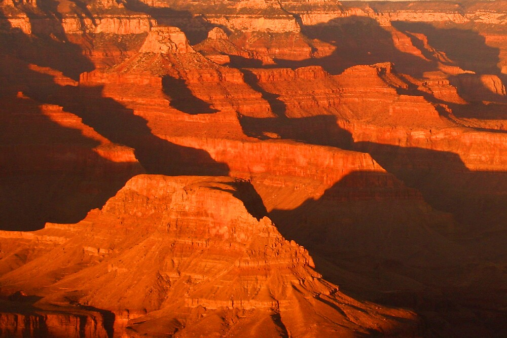 Evening Shadows in the Canyon by Patricia Montgomery