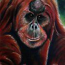 Orangutan by NiamhWitch