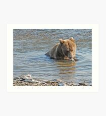 Bear Series # 13 Art Print