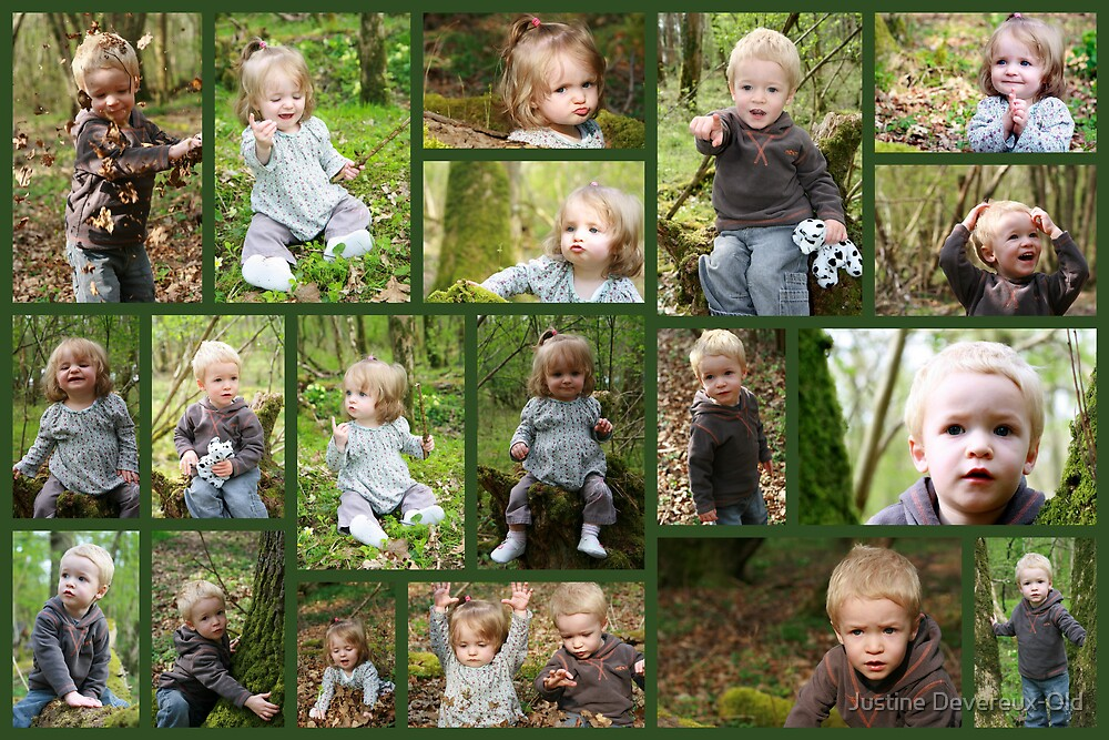 Woodland fun! by Justine Devereux-Old