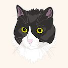 Casual Cat by Dan Tabata