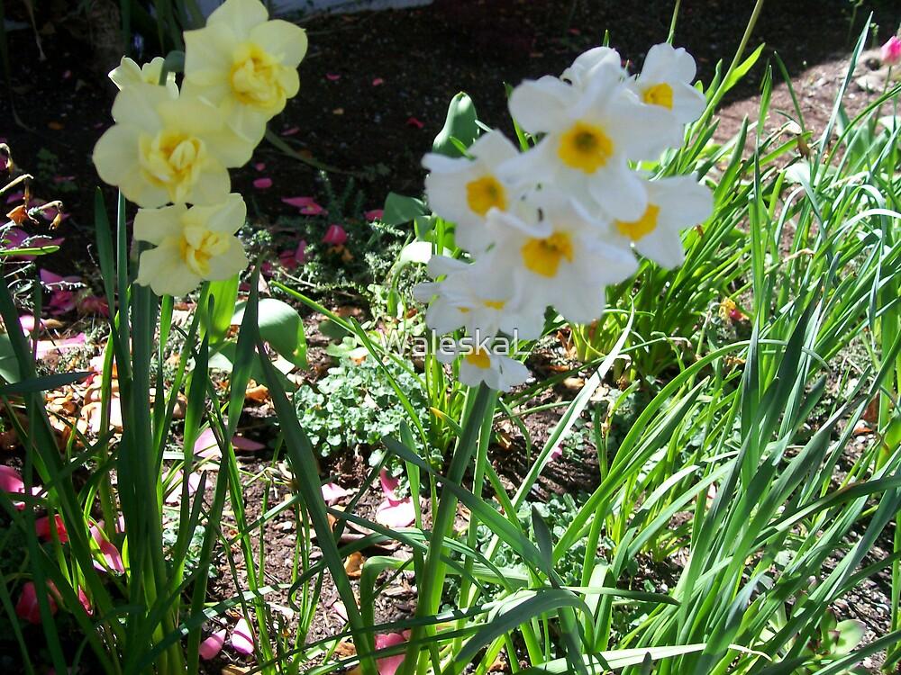 Happy Flowers by WaleskaL