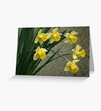 Shouting spring Greeting Card