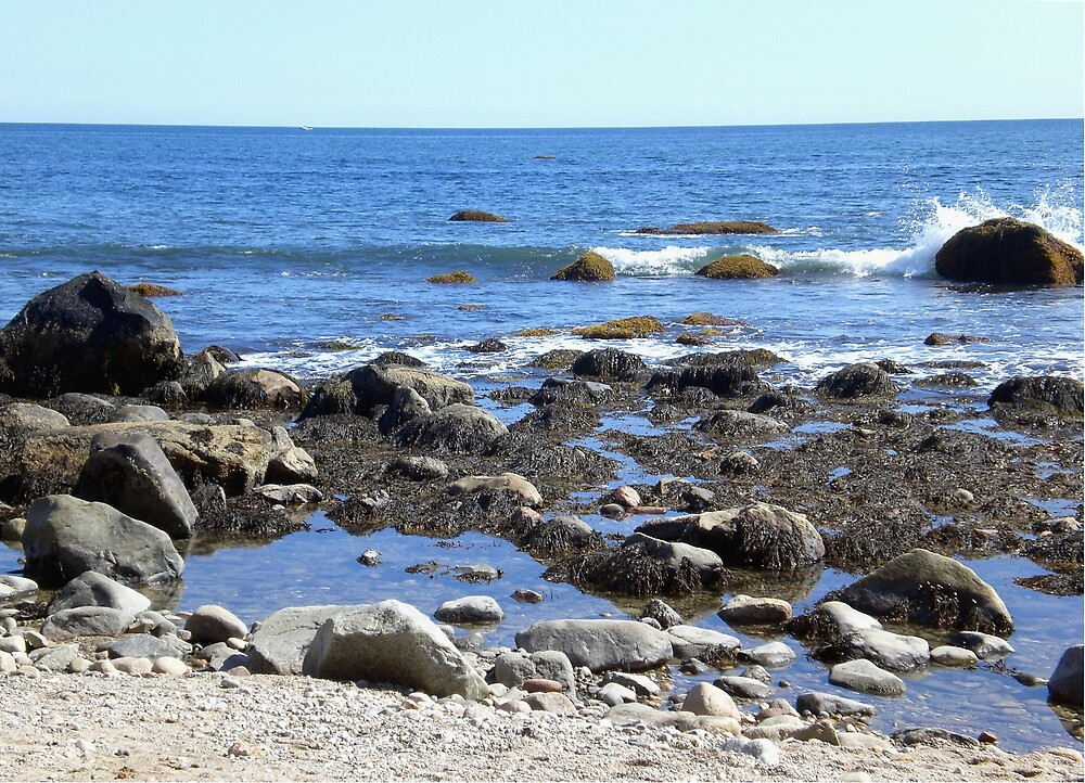 Rocky Beach by introspectionx