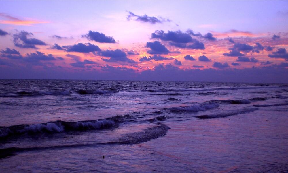 Purple Sunset by introspectionx