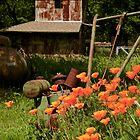 Spring at the Farm by Barbara  Brown