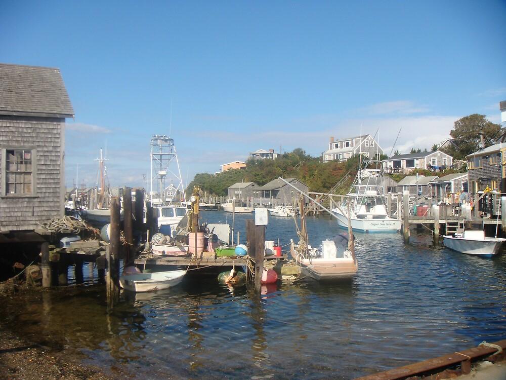 Menemsha Harbour, Martha's Vineyard by trentsebbens