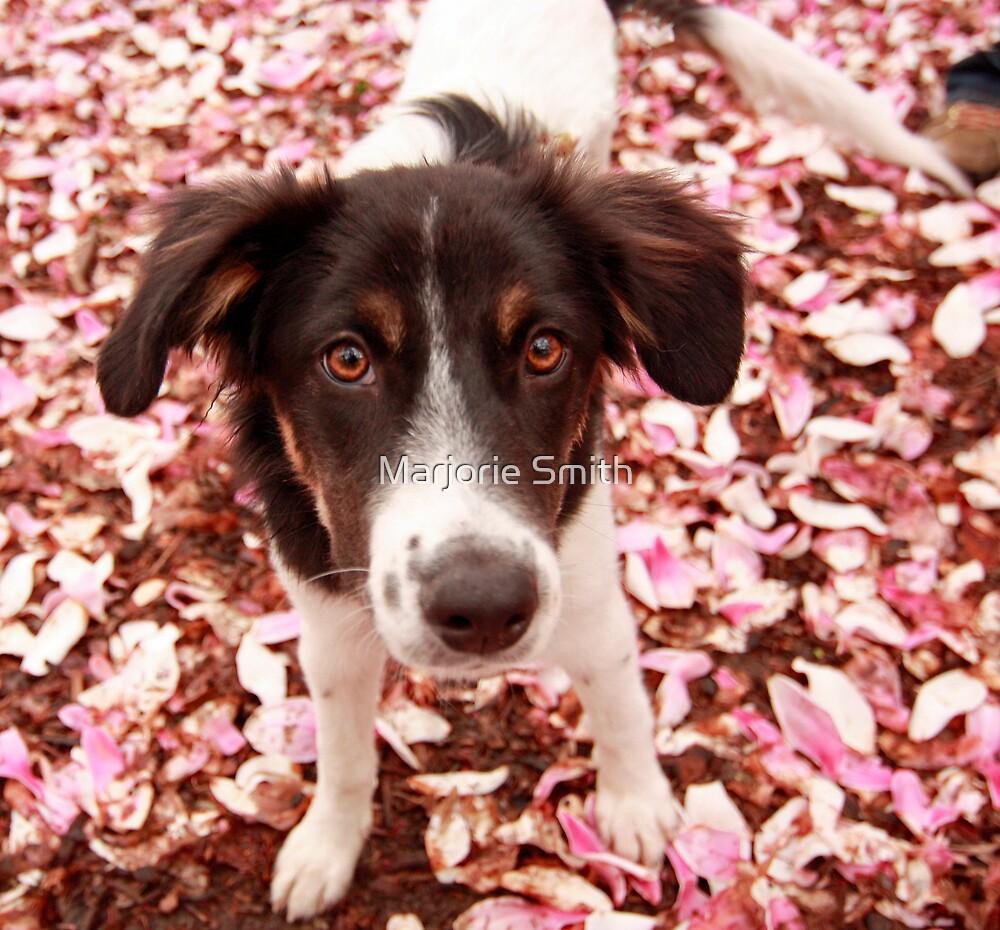 Pup In Petals by Marjorie Smith