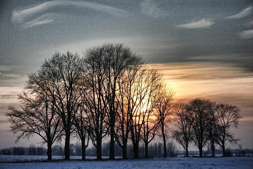 winter sunset by JohnKeeley