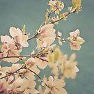 Love in Bloom by HighlandGhillie