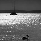 Moody Bay by PsiberTek